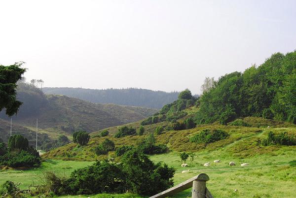naturen1